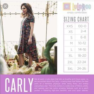 LuLaRoe Dresses - NWT LuLaRoe Carly Dress | M